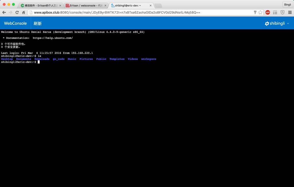 SSH 远程终端 WebConsole