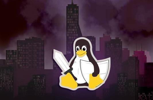 守卫自由的 Linux 世界