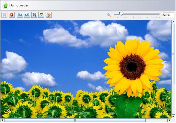 JumpLoader 一个文件上传Java applet
