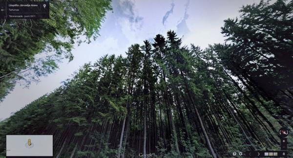 谷歌街景拍下的13张令人难以置信的美图