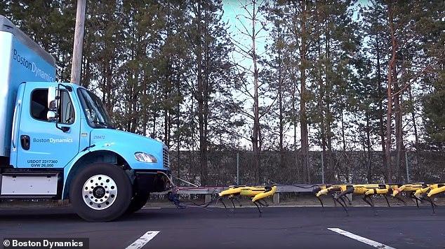 机械雪橇犬波士顿动力用十台机器狗拉动卡车