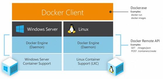 Docker联手微软:Container的跨平台应用开发