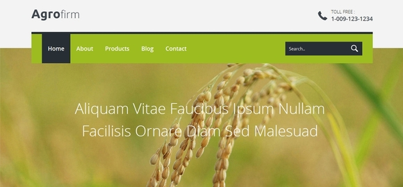 Agro firm - responsive html5 templates