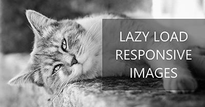 图片延迟加载实现:ResponsivelyLazy