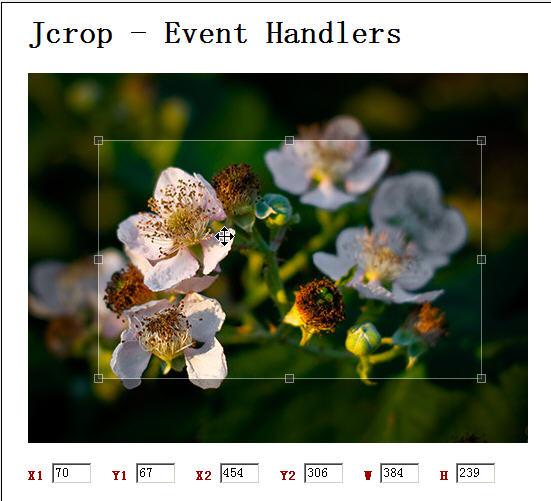 利用jQuery与Java实现在线图片的剪切