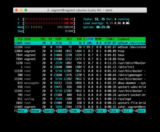 在 Ubuntu 14.04 下使用 cgroups 和 Docker