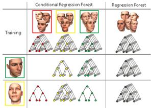 随机森林在人体识别中的应用